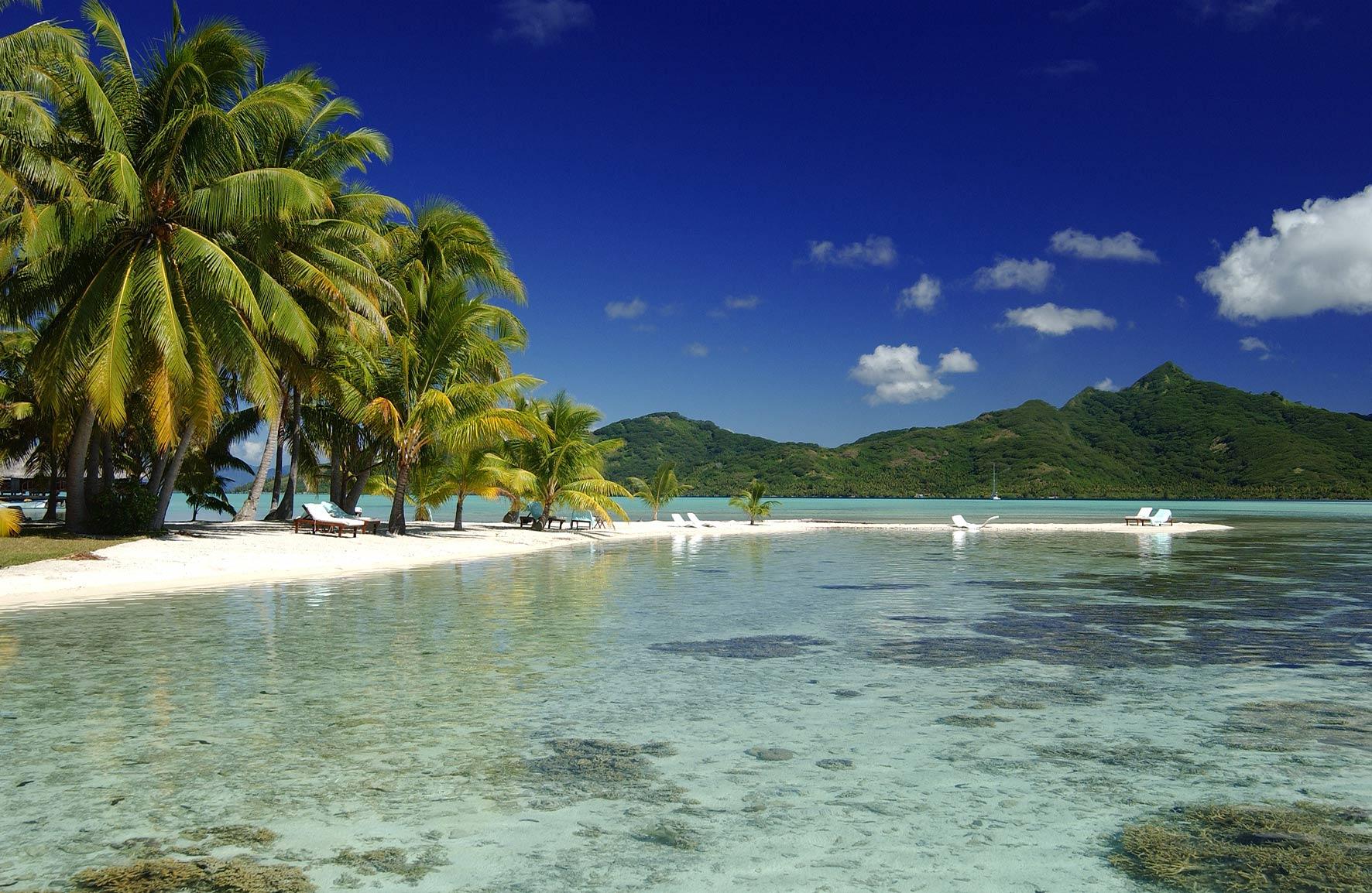 Fonds d ecrans for Chambre 13 tahiti plage